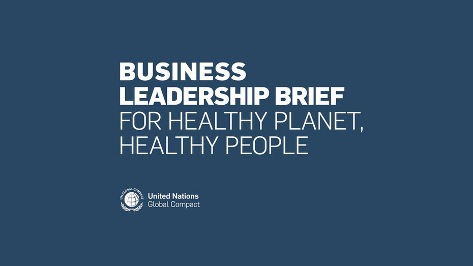 news article illustration, business leadership brief for healthy planet - healthy people, UN, United Nations, Global Compact
