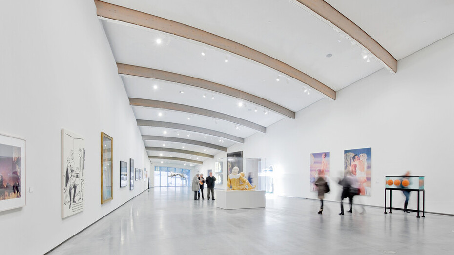 Vaulted Ceilings With Great Acoustics Design